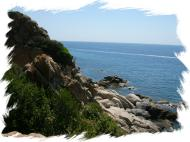 Enjoy the natural beauty of Corsica